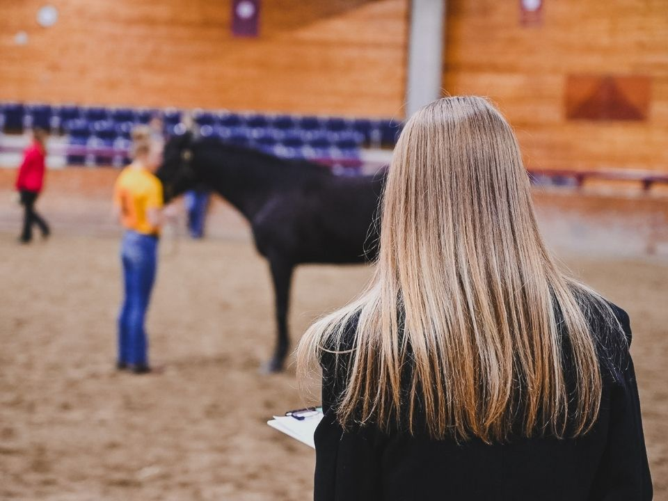 student looking at horse