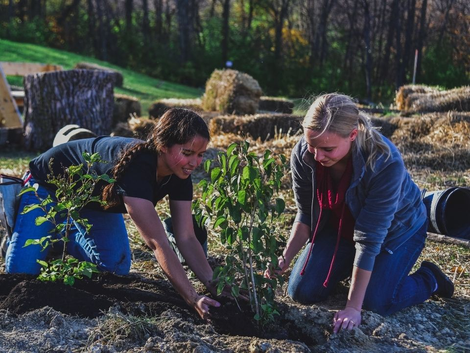 students planting in ground