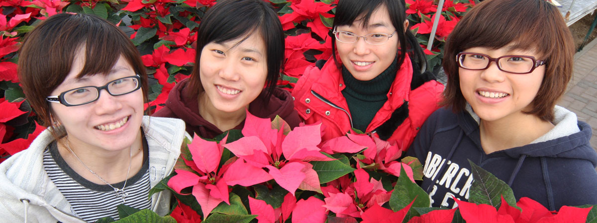 chinese students with poinsettias