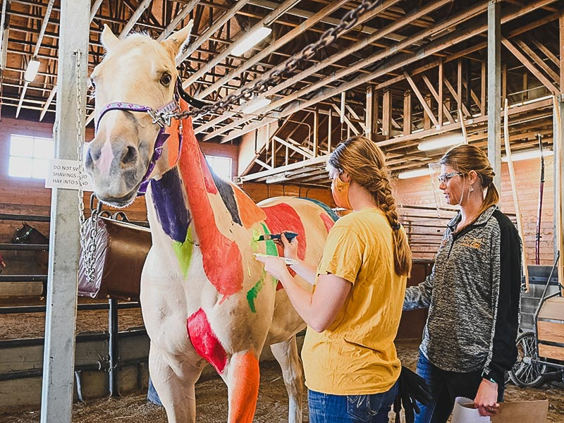 Student and faculty in Equine Painting Class at University of Minnesota Crookston