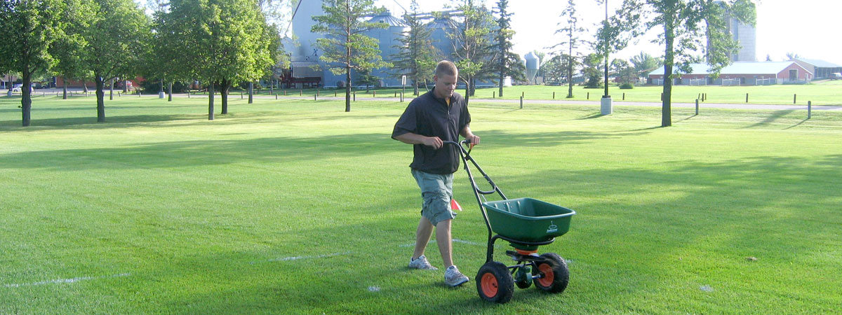 Student seeding the grass