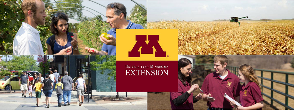 Minnesota Extension - four pictures of Extension educators helping out in agriculture, education and community.