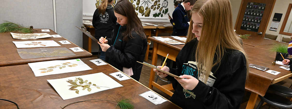 Forestry Contest at UMC's Agriculture and Natural Resources Activities Day