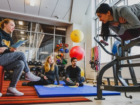 EXERCISE SCIENCE AND WELLNESS