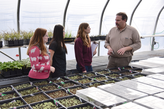 students in one of the greenhouses
